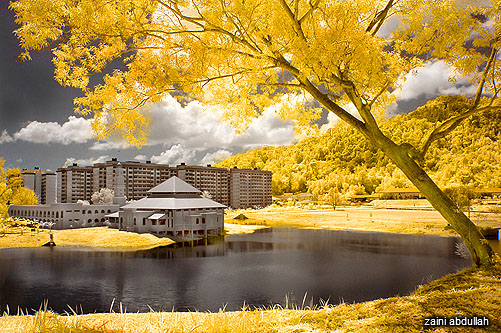 IR Infrared Yellow Lake